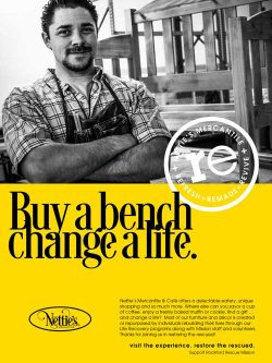 Bench-Ad-reduced